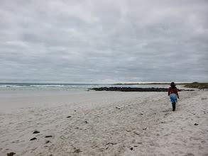Photo: Tortuga Bay