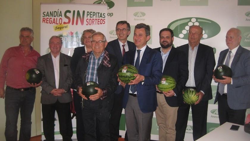Anecoop venderá 150 millones de kilos de sandía sin pepitas este año
