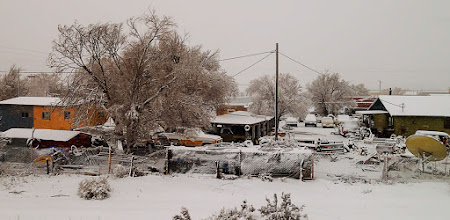 Photo: Somebody's backyard outside Albuquerque, NM from the Southwest Chief. #amtrak #newmexico