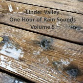 One Hour of Rain Sounds, Volume 5