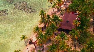 Breezin' Through Tahiti