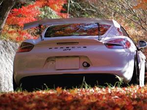 ケイマン GT4のカスタム事例画像 aw981gt4さんの2020年11月11日16:48の投稿
