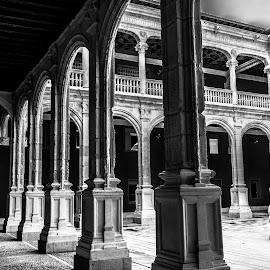 claustro palacio avellaneda, Peñaranda de Duero, Burgos by -. Phooneenix .- - Black & White Buildings & Architecture ( peñaranda, burgos, avellaneda, claustro, palacio, duero )
