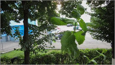 """Photo: Turda - Calea Victoriei, Bl.B15, Ap.8-""""Destindere in balcon, menta - 2019.07.16"""