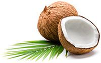 http://www.trustedhealthproducts.com/shake-the-crave-intro-offer/img/coconut.jpg