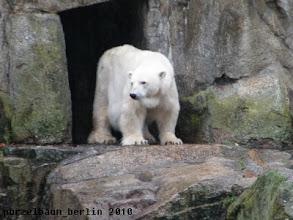 Photo: Katjuscha wartet auch schon ;-)