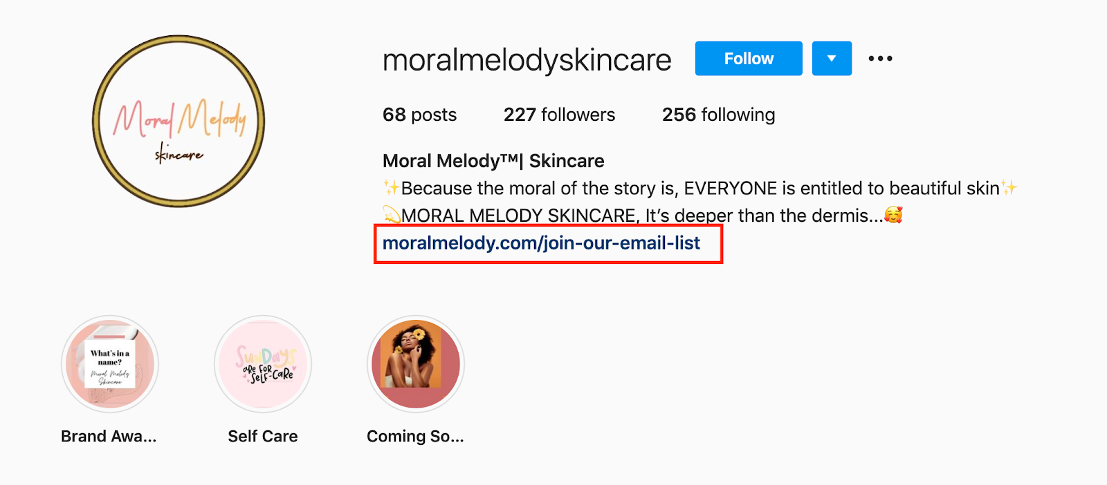email list in the instagram bio