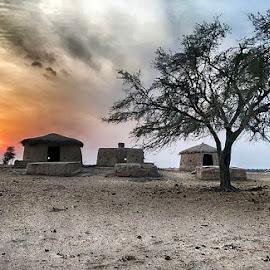 Cholistan by Abdul Rehman - Instagram & Mobile iPhone ( clouds, pakistan, desert, tree, huts, sunset,  )