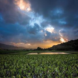 by Kelley Hurwitz Ahr - Landscapes Cloud Formations ( sunset in kauai )