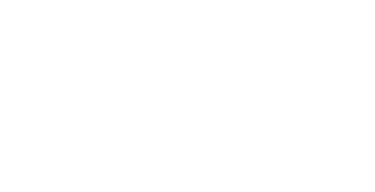 Beards and Fros logo