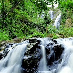 Pikkan Falls by Catalino Jr Baylon - Landscapes Forests