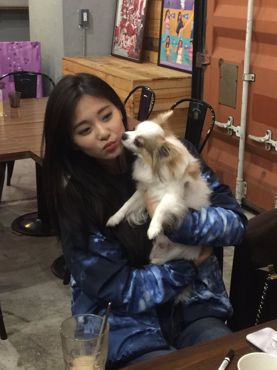tzuyu with dog