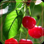 Berry Juicy 2020 live wallpaper