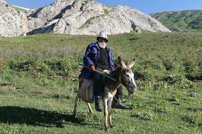 Shepherd on its donkey.