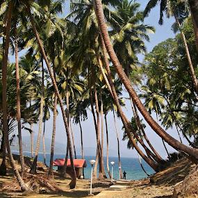 like heaven by Pratik Nandy - Landscapes Travel
