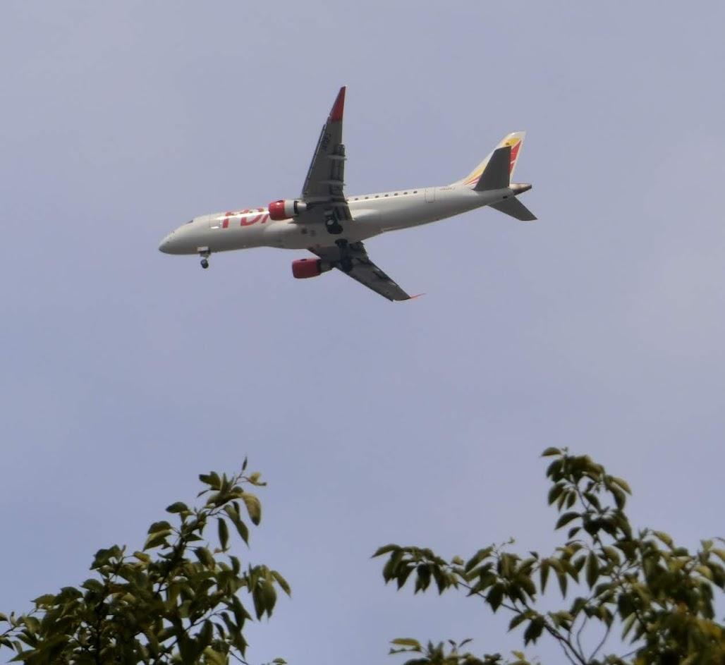 茶屋ヶ坂公園から撮影の飛行機