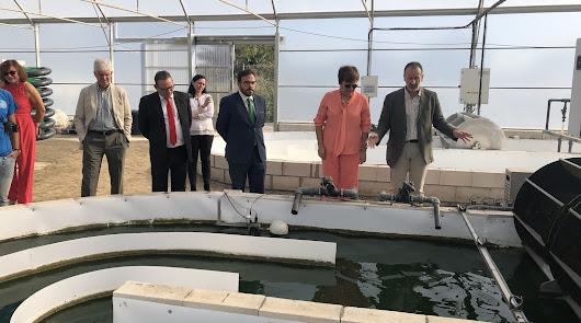 Para el Gobierno Almería está en la cima europea en tecnología agraria