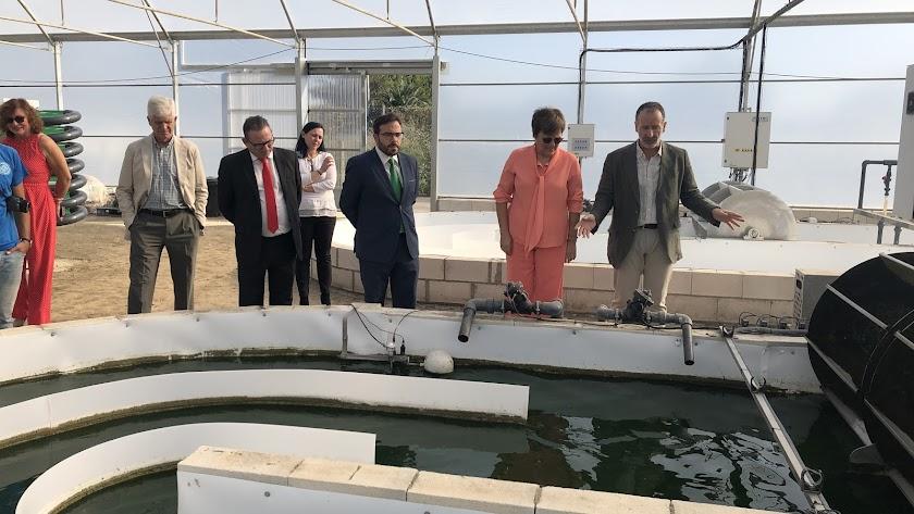Visita a la planta de producción de microalgas de Biorizon Biotech