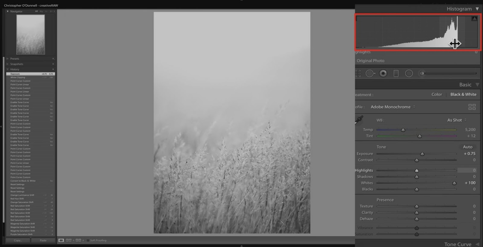 lightroom tonal limits