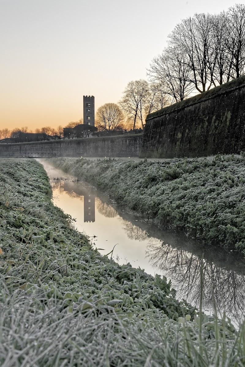 Le Mura di Lucca  di simon_rohl