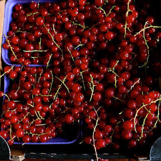 Red Currant Syrup.