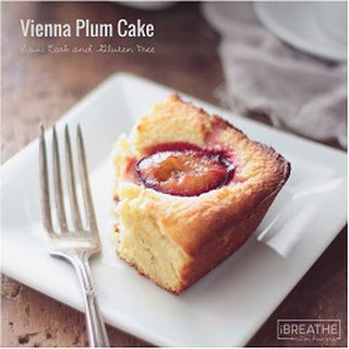 Vienna Plum Cake - Low Carb and Gluten Free