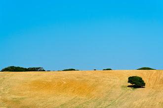 Photo: Bare hillside, Sardinia