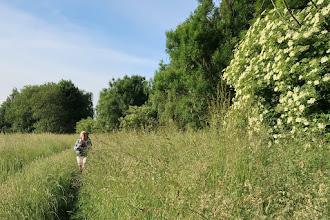 Photo: Dans la brousse