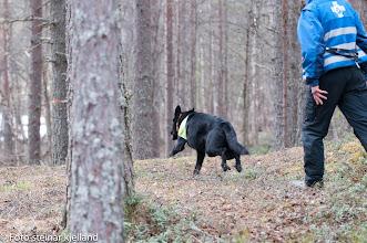 Photo: Boo og Jan Ståle runderer