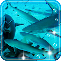 Sharks Coral Reef icon