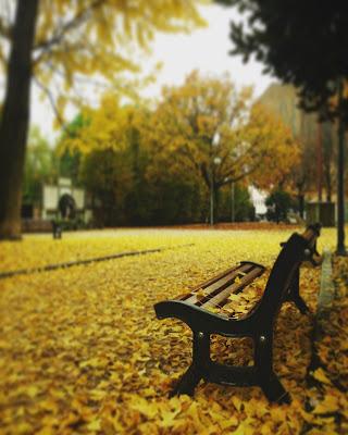 Tappeto giallo di laura_bazzy_bazzan