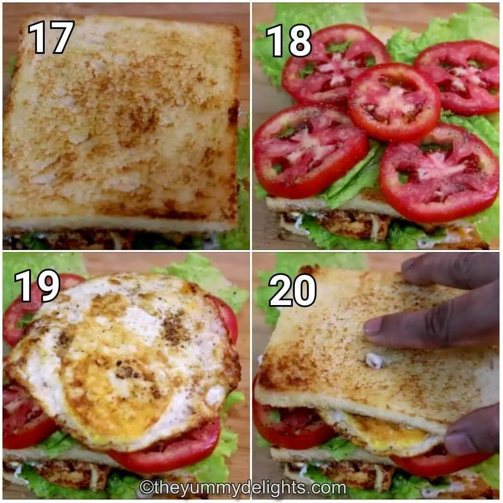 step by step image collage of making the club sandwich