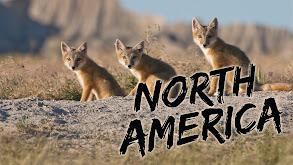 North America thumbnail