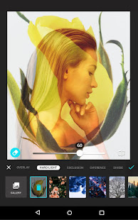 App Photo Editor, Filters & Effects, Presets - Lumii APK for Windows Phone