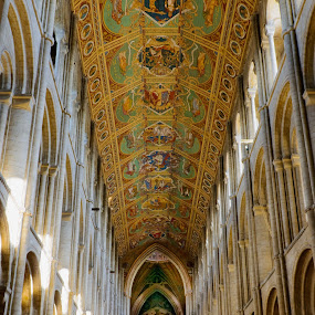 The Ceiling of Ely Cathedral. by Stefen Dicks - Buildings & Architecture Other Interior ( ceiling, cathedral, medieval, painting, design )