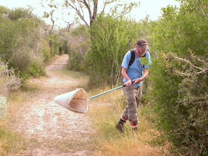 Photo: Sweeping along the edge of Jaguarundi Trail
