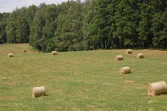 Photo: Okolice Boreczna (Schnellwalde)