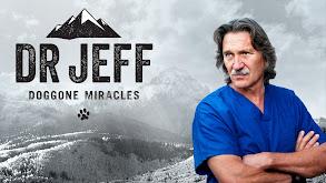 Dr. Jeff: Doggone Miracles thumbnail