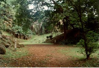 Photo: Limbe, Jungle  village