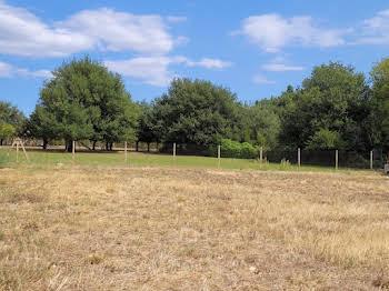 Terrain à bâtir 800 m2