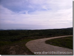 Vista del camino antes cubierto de eucaliptos