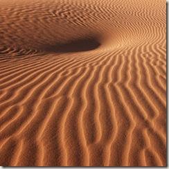 260px-Morocco_Africa_Flickr_Rosino_December_2005_84527213