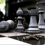 Chess Pro 3D Icon