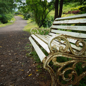 by Akshay Bhondokar - Backgrounds Nature ( nature, loneliness )