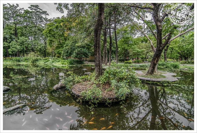 大東溼地公園高雄忘憂森林