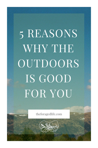 5 Reasons why the Outdoors is Good for You | Living with Nature by The Foraged Life