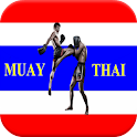 MUAY THAI FIGHTER BOXING FIGHT icon