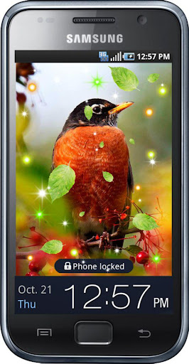 Birds of Forest HD LWP