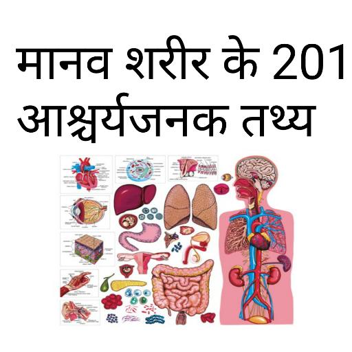 生活App|Manav Sharir ke rochak tathya LOGO-3C達人阿輝的APP