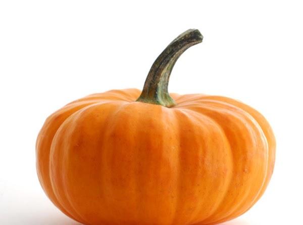 Delicious Pumpkin Pie Dessert Squares Recipe